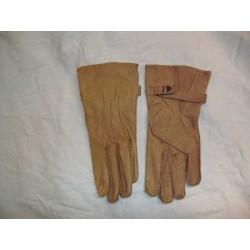 Para handschoen